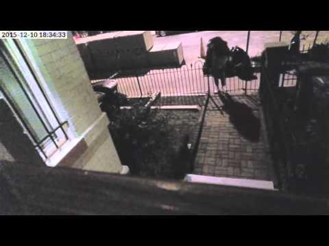 El ladrón tarda en darse cuenta que hay una cámara