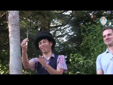 Японский уличный фокусник. Невероятный фокус с вилками.