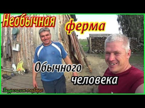 На ферме у Александра /Необычное хозяйство/Деревенская жизнь