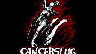 Watch Cancerslug Black Widow video