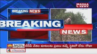 Farmer's Struggle With the Occupation For Government Land In Pithapuram