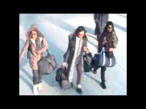 Turkish envoy, airlines head called to British parliament