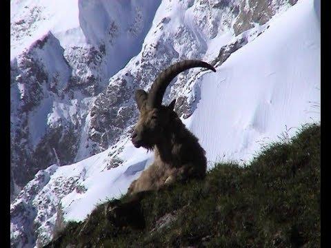 Туры Кавказа. Последняя тайна