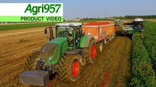 HIGH TECNOLOGY TOMATOES HARVEST by SPEKTRA-AGRI | MTS SANDEI TH 500 2x FENDT 939 S4 | Gruppo GAVIO