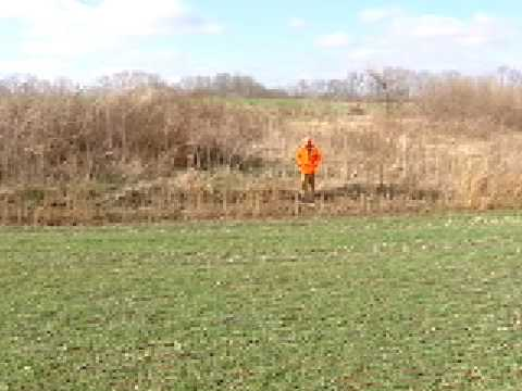 Kentucky Rabbit Hunting Video