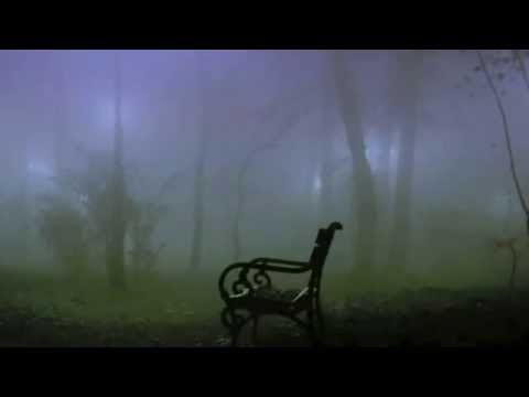 Creepy Forest Music Eerie