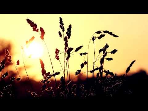 Martin Mittone - Summer DejaVu [Free Download]