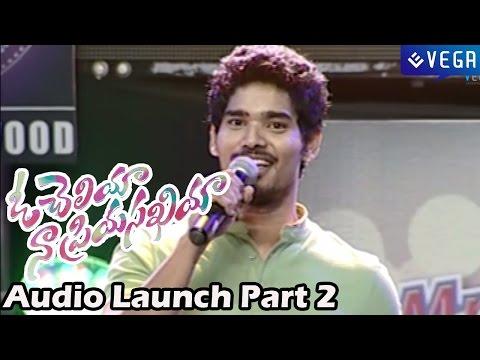 Oh Cheliya Naa Priya Sakhiya Movie  Audio Launch Part 2 : Latest Telugu Movie 2014 video