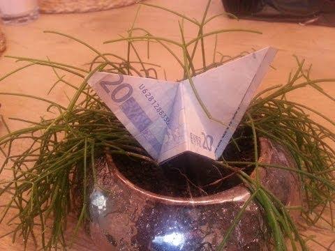 Schmetterling aus einem Geldschein falten - schnelles Geldgeschenk