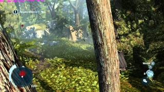 Assassins Creed 3 PC Gameplay GTX 580 HD Part 14