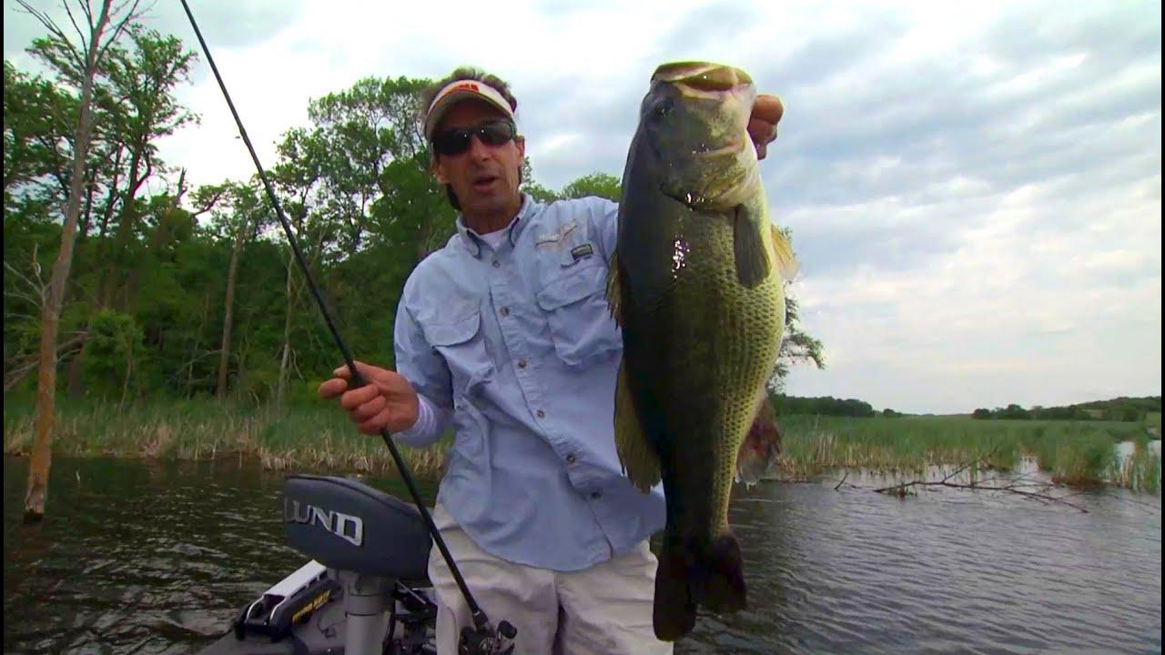 World 39 s best bass bait youtube for Best bait for pond fishing