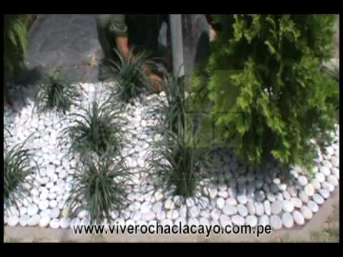 Piedras decorativas youtube for Piedras decorativas para jardin baratas