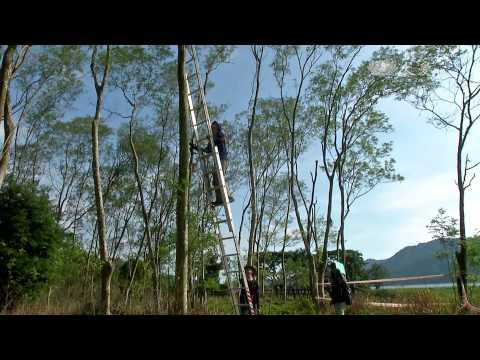 台灣-小人物大英雄-20150824 山麻雀的守護者