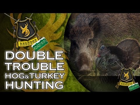 Extreme Hog Hunting in Alabama!