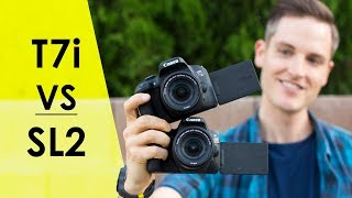 Canon SL2 vs. Canon T7i for Video? — Review and Video Test