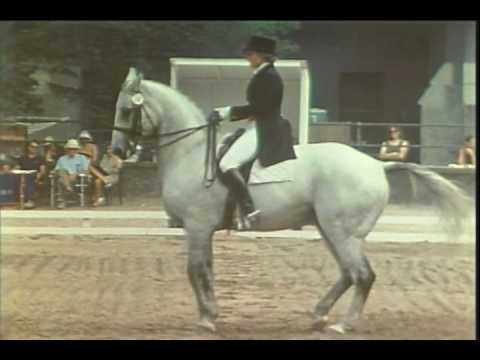 0 USET Dressage Competition Documentary
