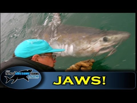 JAWS - Biggest shark in UK!! - ORIGINAL FOOTAGE - Graeme Pullen & Wayne Comben - TAFishing
