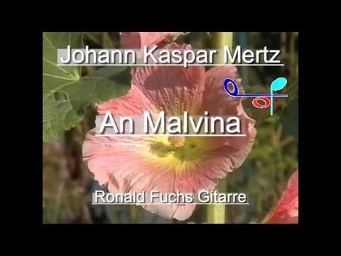 Johann Kaspar Mertz: An Malvina