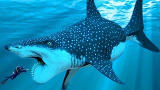 STRANGEST New Shark Species Discovered By Scientists!