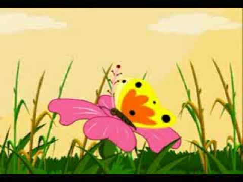 Ammupappa Tamil Nursery Rhymes Butterfly Paapa Paatu video