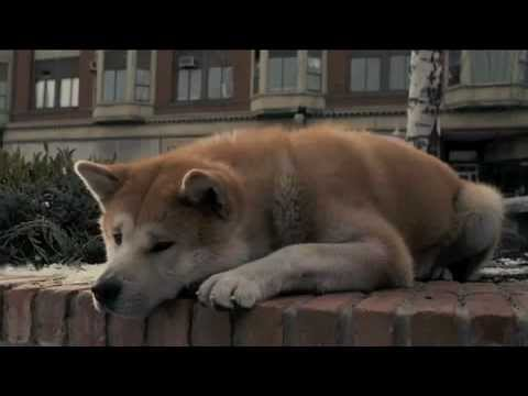 Hachiko Tribute History video