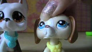 LPS: How To Make An LPS Video [REQUEST VIDEO]