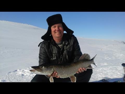 рассказы про рыбалку на щуку