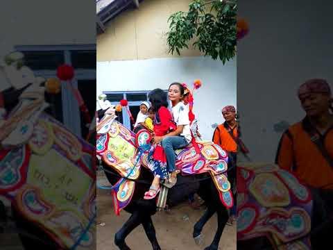 Di Goyang Dewi Perssik Indah Pada Waktunya Kuda Ikut Joget...