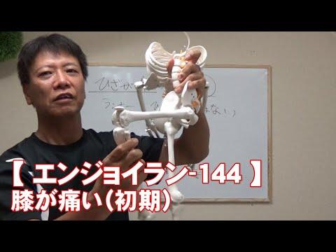 #144 膝が痛い(初期)/がんばらないで楽に長く走る【エンジョイラン】