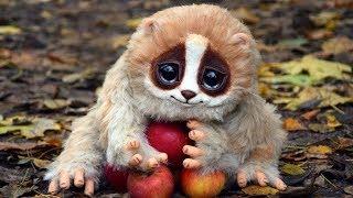 Top 10 Animais Fofos Que Podem Matar Você