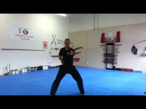 xingyi quan basic training Image 1