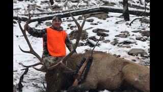 Utah General Season Bull Elk 2018