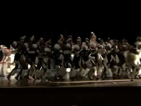 Amabhubesi Traditional Zulu Dance
