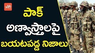 పాక్ అణ్వాస్త్రాల గురించి బయటపడ్డ నిజాలు | Unknown Facts About PAK Army 2017