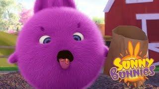 Sunny Bunnies - FARMER BUNNIES   Cartoons For Children   Funny Cartoons For Children