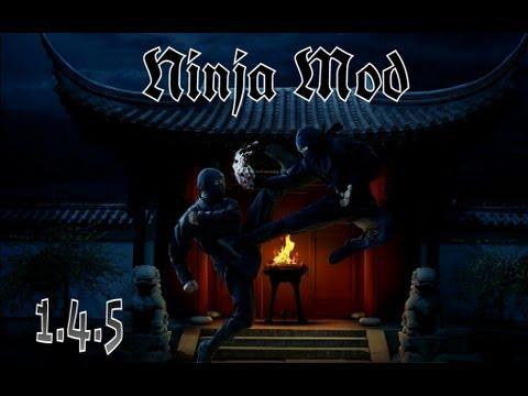 Review 1.4.5 | Ninja Mod!!
