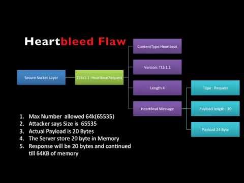 openssl the heartbleed flaw in openssl,heartbleed bug tutorial
