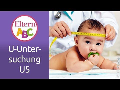 U-Untersuchungen: Was passiert bei der U5? | Baby | Eltern ABC | ELTERN | Elternratgeber
