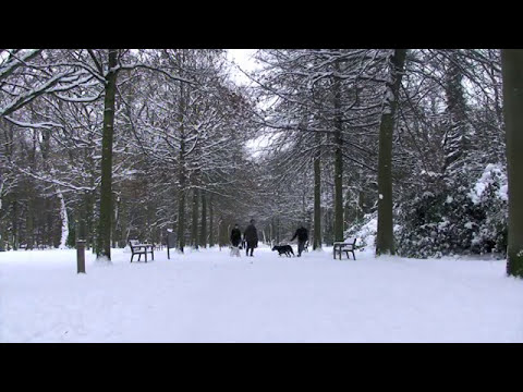 Yesterday's Over | Chip Souza