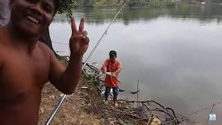 Câu cá giải trí - câu ở hồ này thì thiếu gì cá