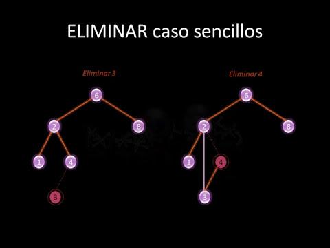 Arboles binarios y Grafos (Parte 1)