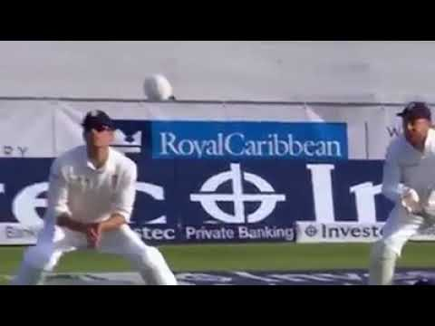 Top 10 Best catches in cricket history #cricket_match