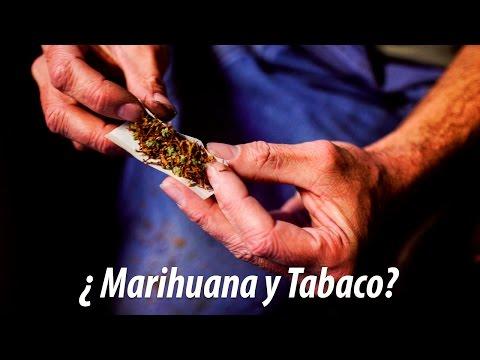 ¿Por qué no deberías mezclar marihuana y tabaco?