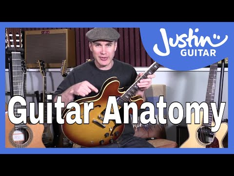Beginner Guide To Guitar Anatomy - Guitar Lesson Tutorial - Know Your Guitar