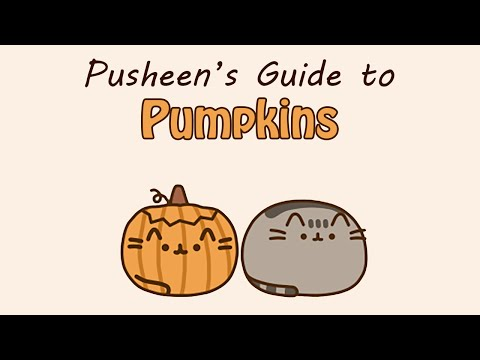 Pusheen Pumpkin Carving Pumpkin Carving Feed Rss2