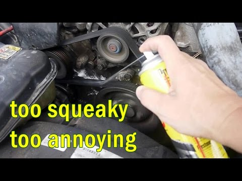 easy fix annoying SERPENTINE BELT squeak noise