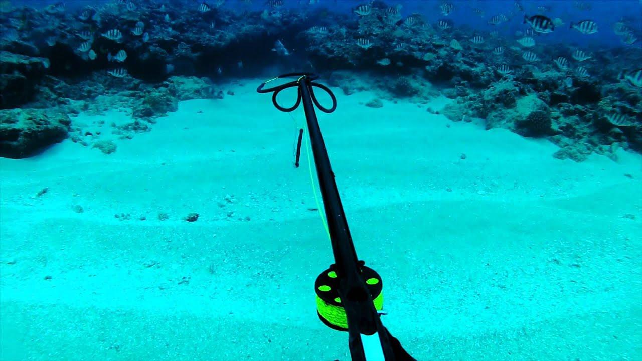 Deep Water Spearfishing Deep Blue Hawaii Spearfishing