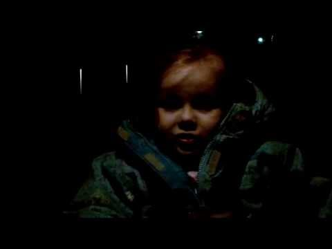 Three Year Old Singing bees In A Trap video