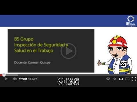 INSPECCIONES DE SEGURIDAD, SALUD Y TRABAJO