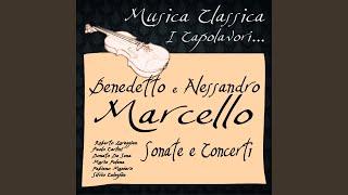 Sonata No. 3 in A Minor: III. Largo